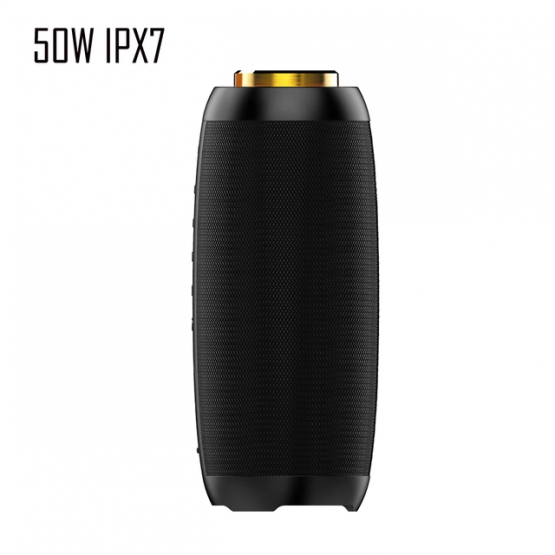 Soundwav2.0 50W Speaker